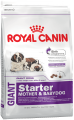 Корм ROYAL CANIN ДЖАЙНТ Стартер 15 кг