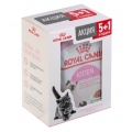 Корм ROYAL CANIN Kitten для котят Киттен  (паштет) 5Х85г 4+1